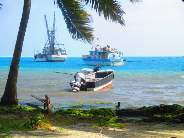 boats, fishing, beach, Caribbean, beautiful, island